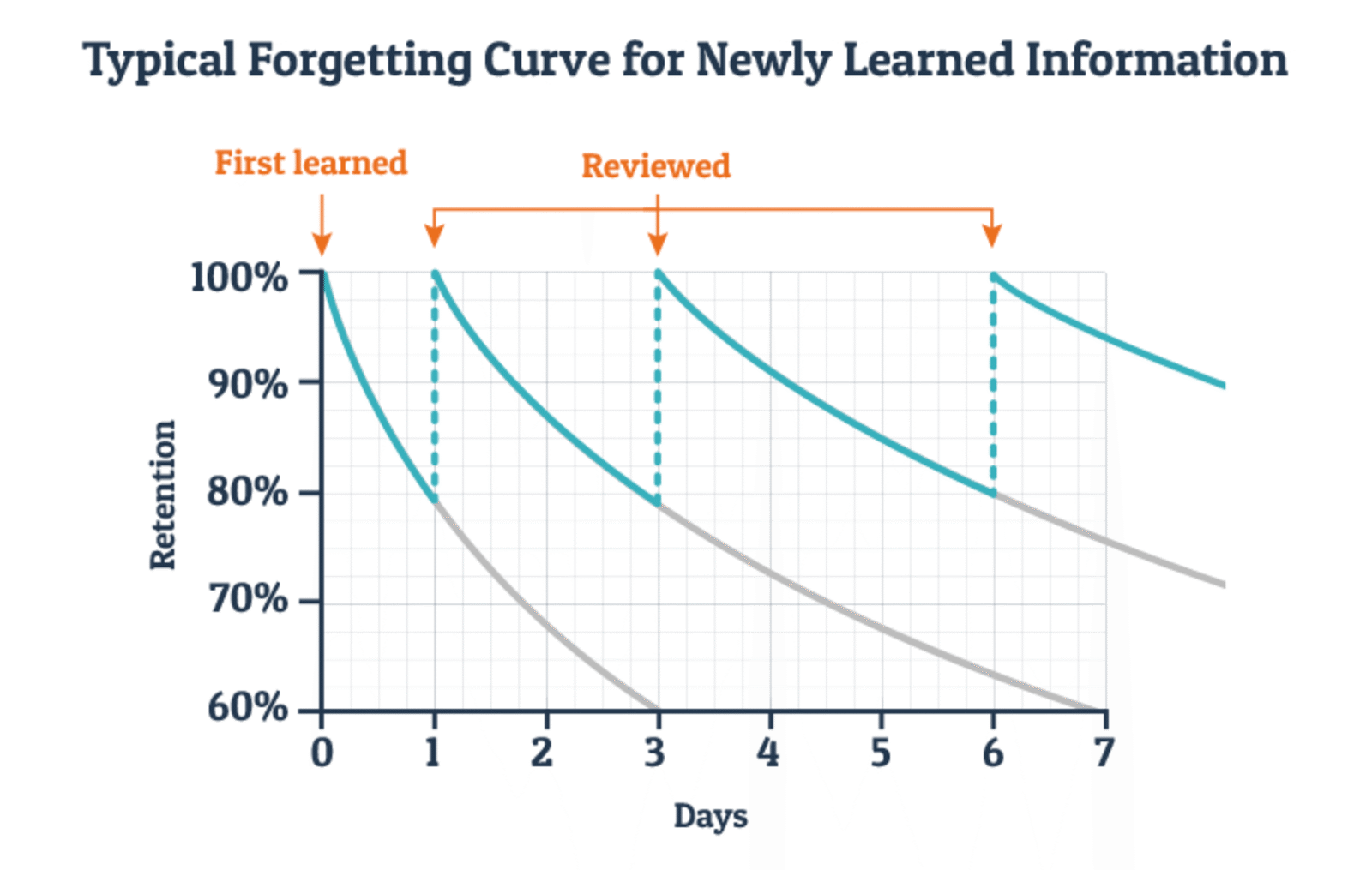 forgetting curve for notes