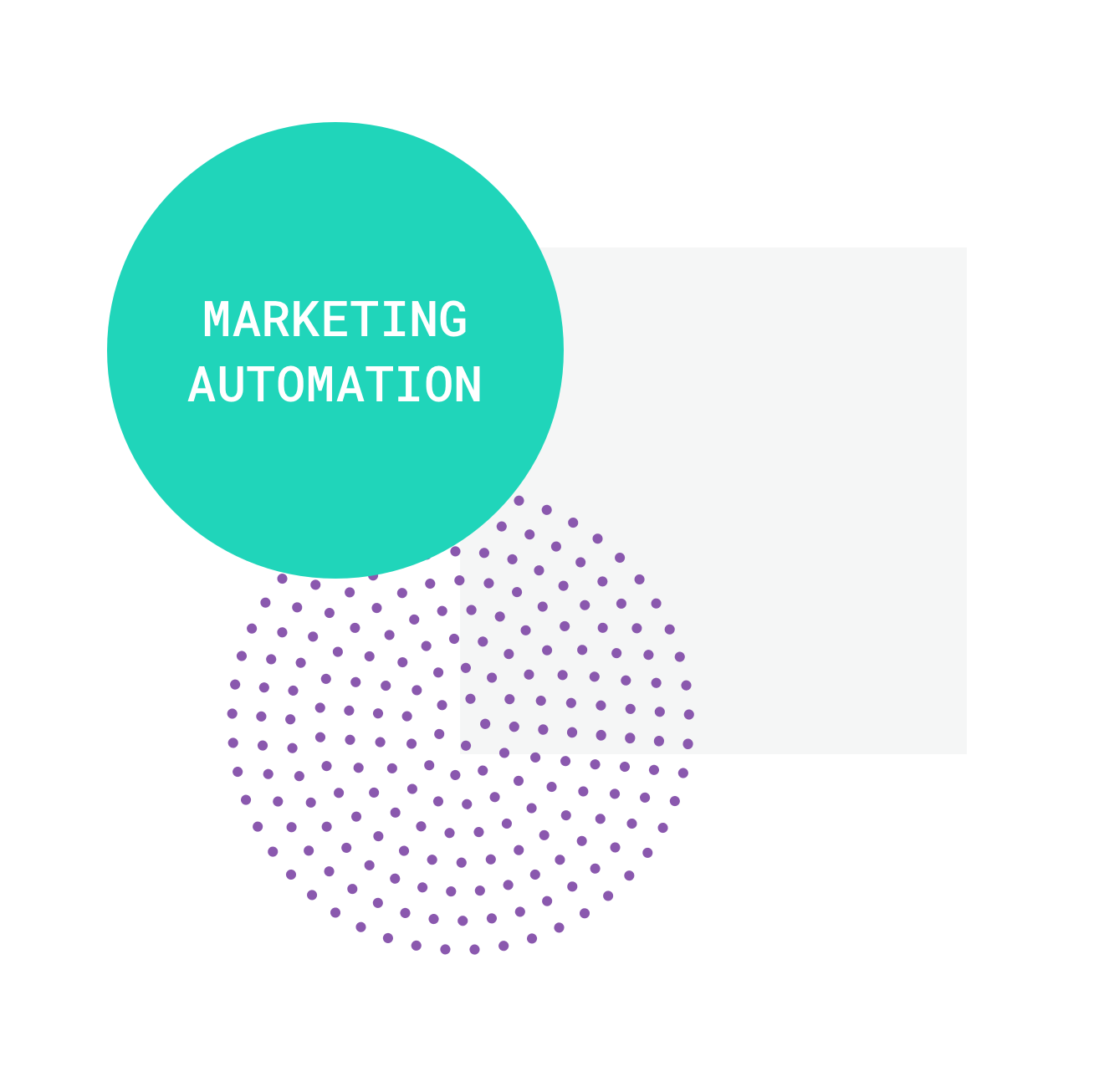 Marketing Automation Tweet Image