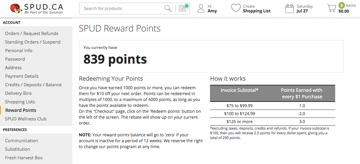 loyalty points program example